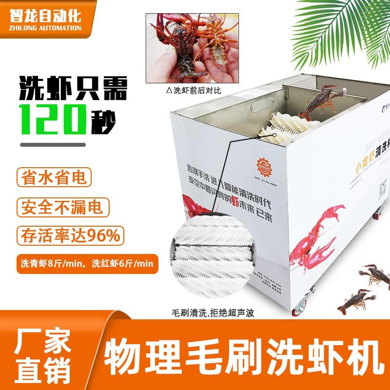全面洁净洗龙虾 小龙虾毛刷清洗机 加工定制,小龙虾清洗机器厂家直售