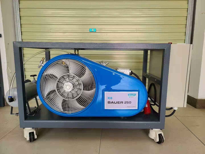 高压大流量天然气压缩机 BAUER-250TE 活塞压缩机天然气往复式压缩机定做
