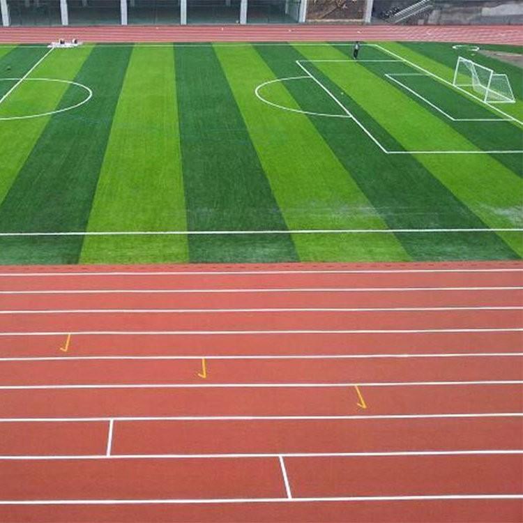 学校操场塑胶卷材批发 专业承接塑胶跑道施工 新环保标准跑道材料