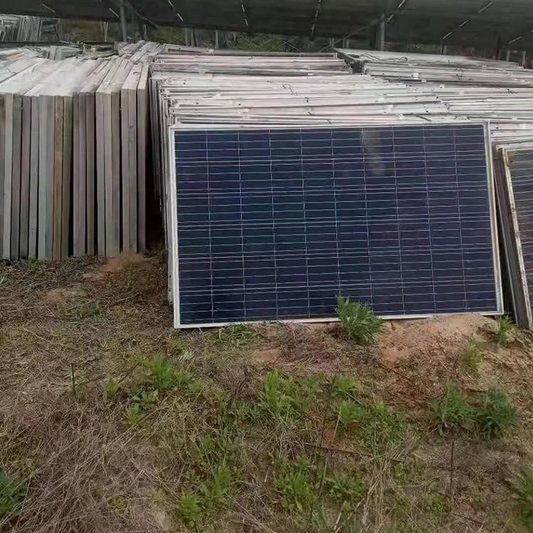 漳州可长期回收废旧太阳能光伏板 逆变器