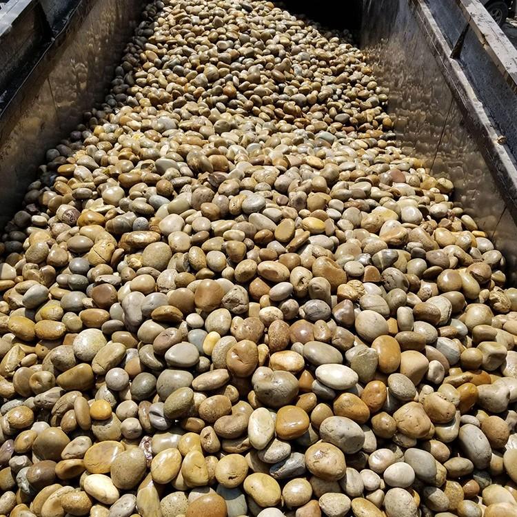 广东鹅卵石滤料 砂石 砾石 卵石 渗水层鹅卵石3-5cm量大优惠 厂家直销 凯诺瑞恒
