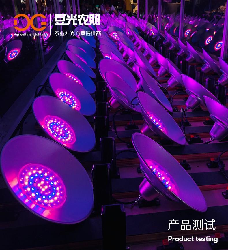 温室大棚苗床育苗补光灯 植物生长灯 全光谱育苗植物补光灯