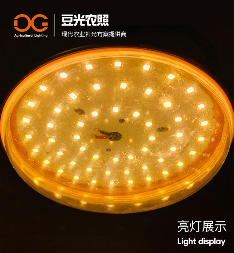 菊花夜间补光专用灯LED植物生长灯长日照光周期处理灯泡 厂家直销