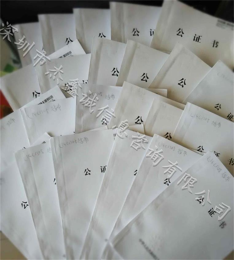 中国CHIAN 招标声明泰国使馆加签 样本